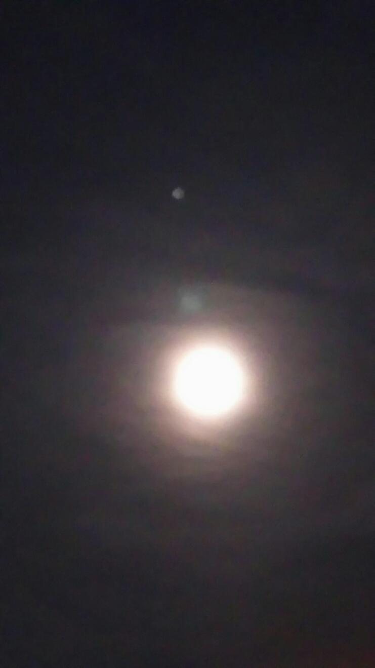 「蒼い月の唄」